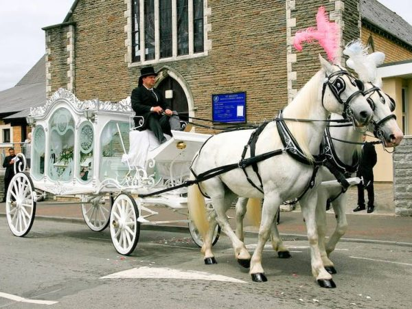 White funeral horse and carriage outside church